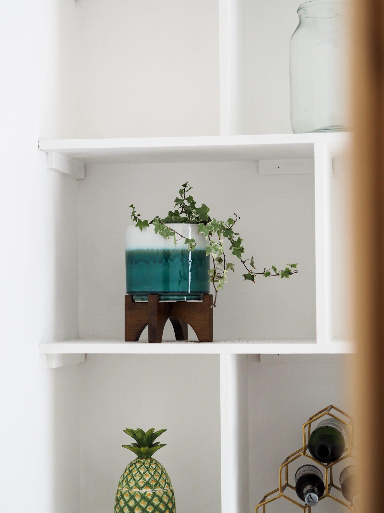 The Little Plum west elm Interior Plant